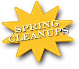 Spring Cleanups