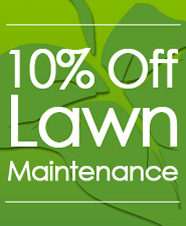 Special Offer, Lawn Care in Lithonia, GA